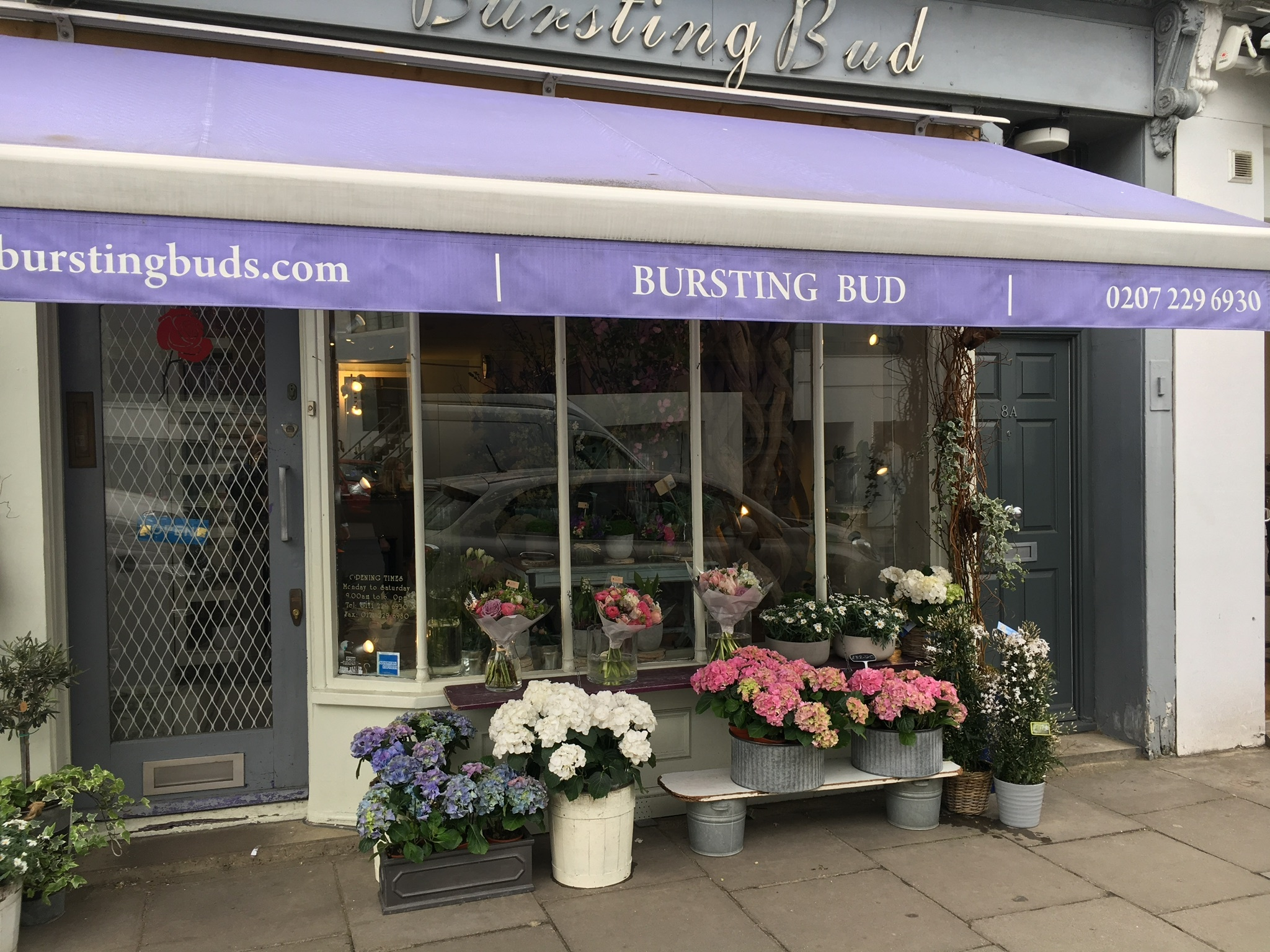 Successful Florist in sought after Holland Park with Royal and Celebrity clientele