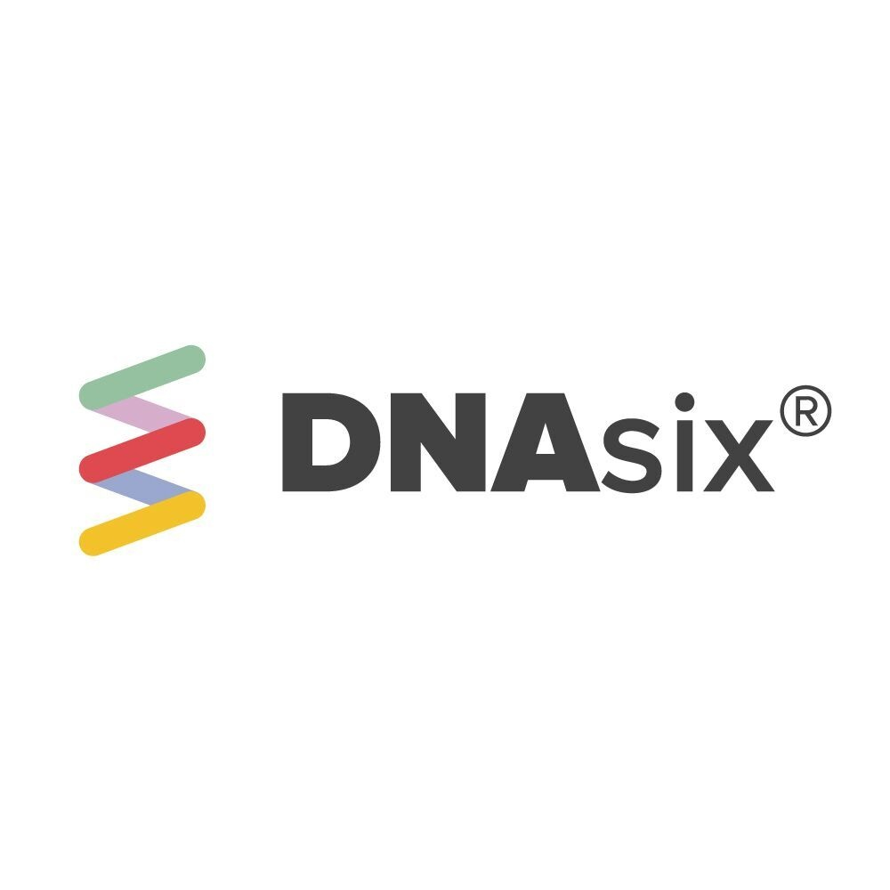 DNAsix®  -  BUSINESS  CONSULTANCY  FOR  THE  DIGITAL  AGE