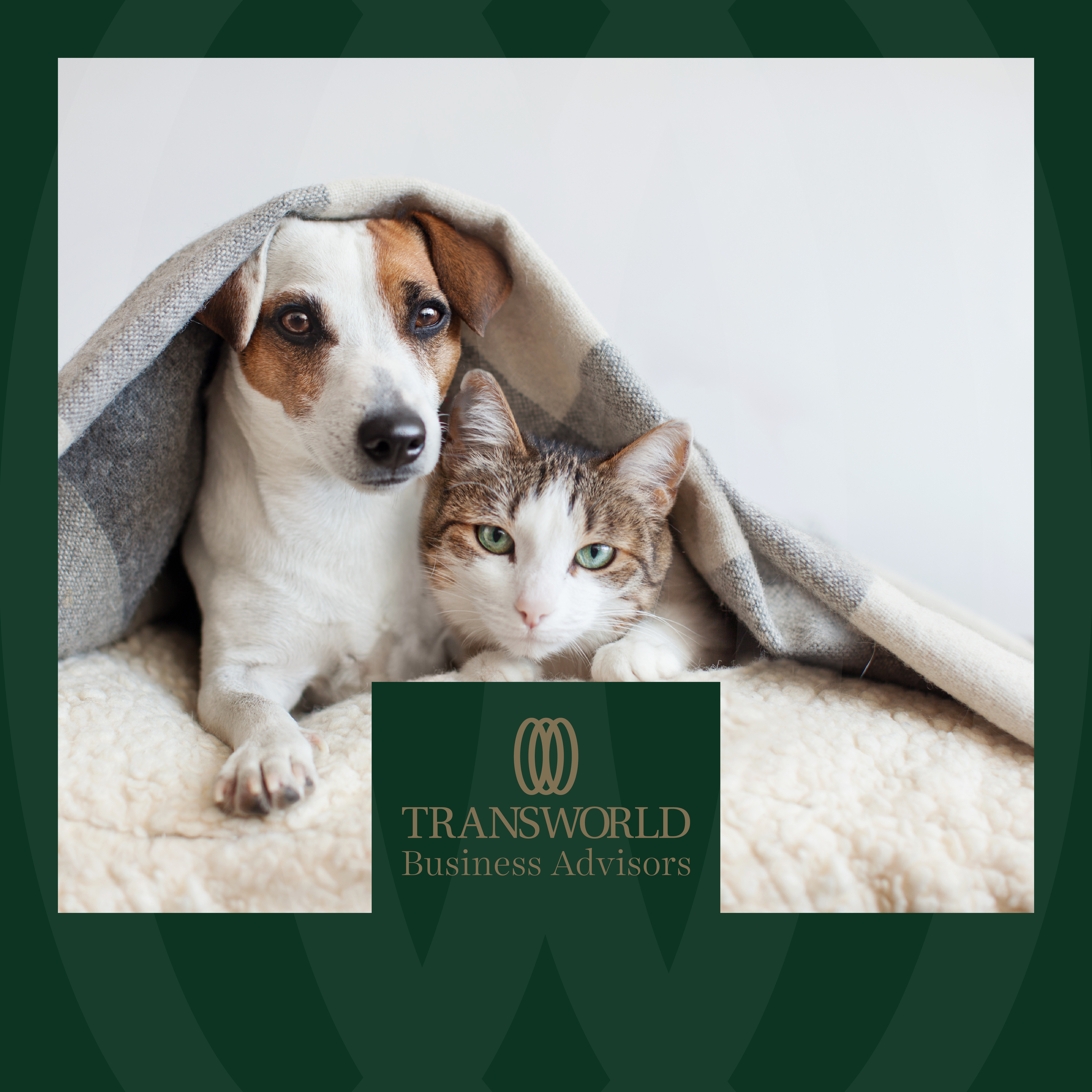 Nationwide House and Pet Sitting Service